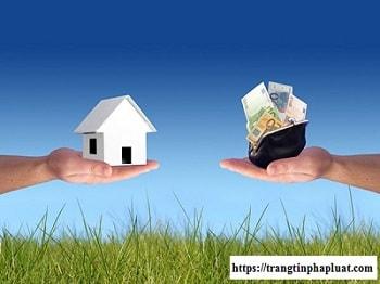 Hợp đồng chuyển quyền sử dụng đất