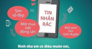 Quy định về đăng ký dịch vụ của các nhà mạng điện thoại