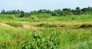 Nghị định số 91/2019/NĐ-CP của Chính phủ : Về xử phạt vi phạm hành chính trong lĩnh vực đất đai