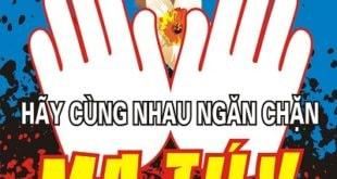 Tình hình sử dụng ma túy ở Việt Nam