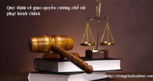 Quy định về giao quyền cưỡng chế xử phạt vi phạm hành chính