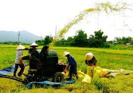 nhận chuyển quyền sử dụng đất nông nghiệp