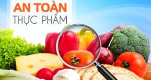 Nghị định số 15/2018/NĐ-CP của Chính phủ : Quy định chi tiết thi hành một số điều của Luật an toàn thực phẩm.