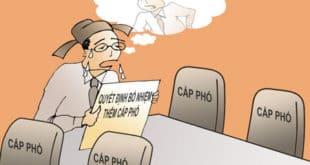 Cán bộ phải được bồi dưỡng trước khi bổ nhiệm