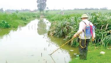 Nghị định số 42/2019/NĐ-CP Quy định xử phạt vi phạm hành chính trong lĩnh vực thủy sản