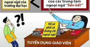Chứng chỉ ngoại ngữ, tin học nào đủ điều kiện thi công chức, viên chức