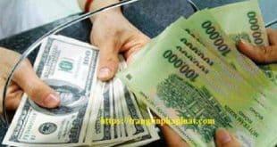 Nghị định số 88/2019/NĐ-CP Quy định về xử phạt vi phạm hành chính trong lĩnh vực tiền tệ và ngân hàng