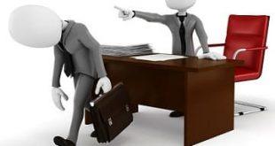 Nghị định 19/2020/NĐ-CP về kiểm tra xử lý kỷ luật trong thi hành pháp luật về xử lý vi phạm hành chính