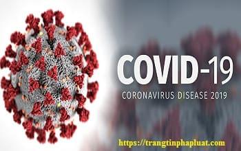Tìm hiểu Luật phòng, chống bệnh truyền nhiễm