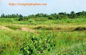 Hướng dẫn xử lý hành vi hủy hoại đất