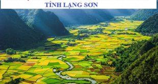 Tài liệu ôn thi viên chức Ngành Y tế tỉnh Lạng Sơn năm 2021